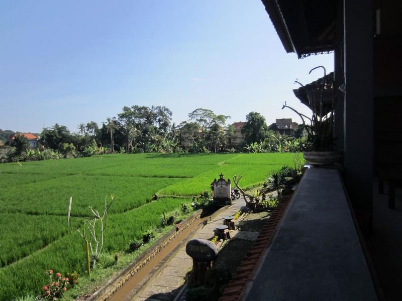 danasari_homestay_ubud_bali_room_ac_balcony_view