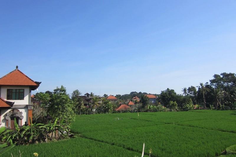 danasari_homestay_ubud_bali_room_ac_balcony_view2