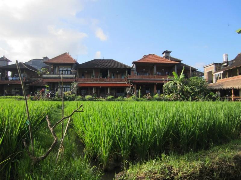 danasari_homestay_ubud_bali_room_ac_property