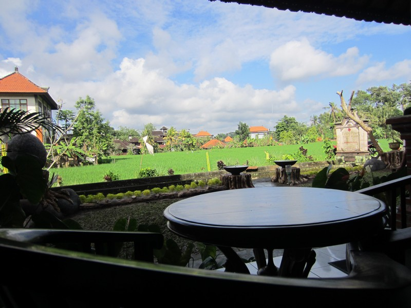 danasari_homestay_ubud_bali_std_room_rice_view_balcony